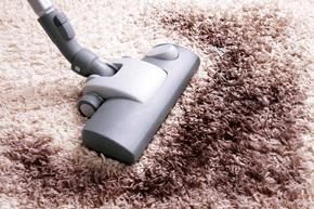 Carpet being vacuumed clean