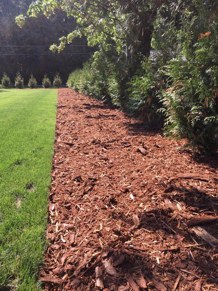 Lawn Care Lawn Mowing Company Construction Landscaping