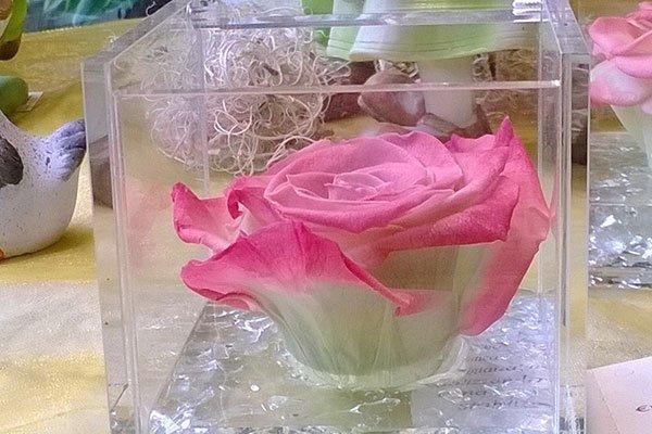 Vaso di vetro con all'interno una rosa, dei pupazzetti raffiguranti una coppia conigli vestiti in verde e bianco