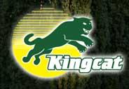 Kingcat logo