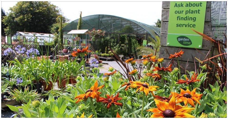 A wide range of garden plants