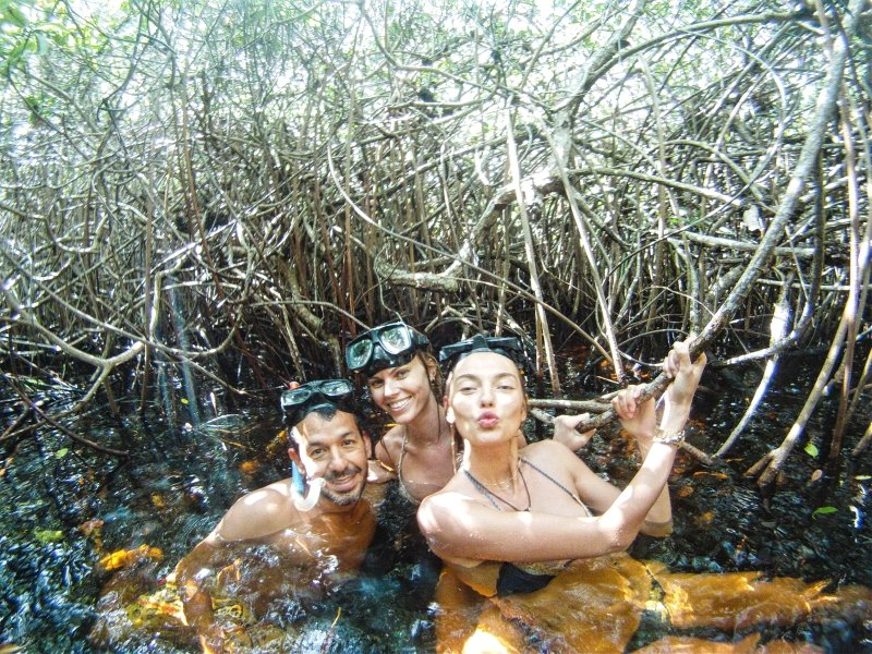 Snorkeling between the Mangroves in Casa Cenote Tulum