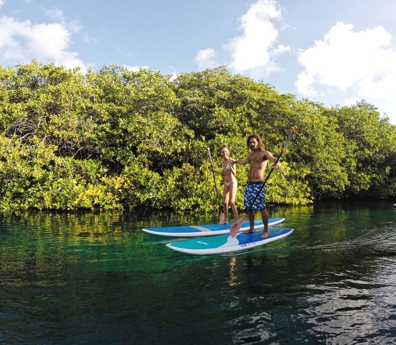 SUP Tour to Casa Cenote with Mexican Caribbean Paddlesurf in Tulum