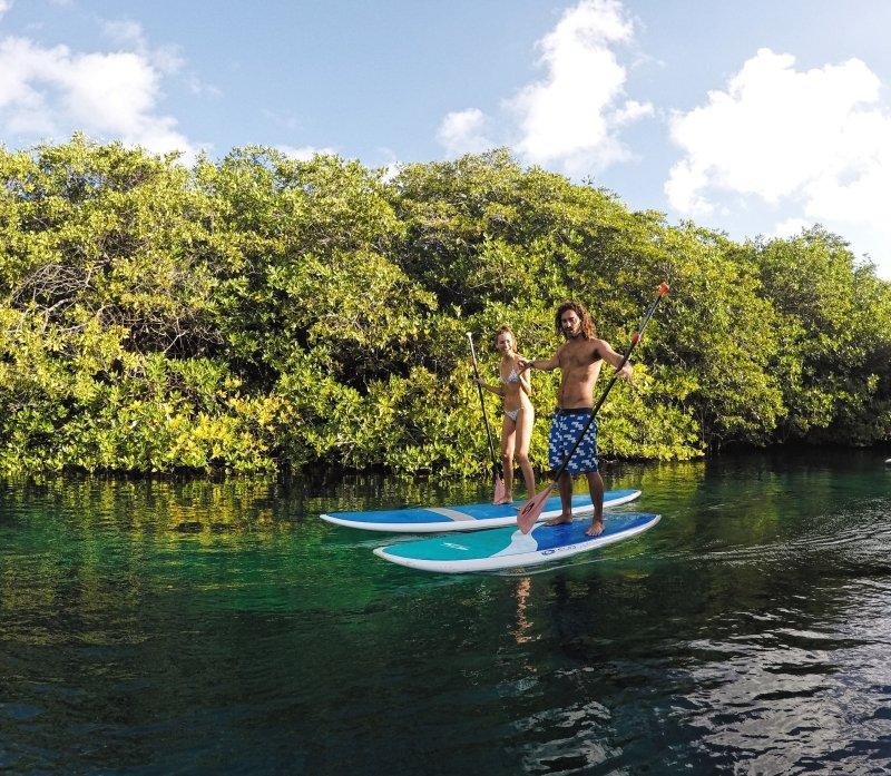 SUP Tour en Casa Cenote con Mexican Caribbean Paddlesurf in Tulum