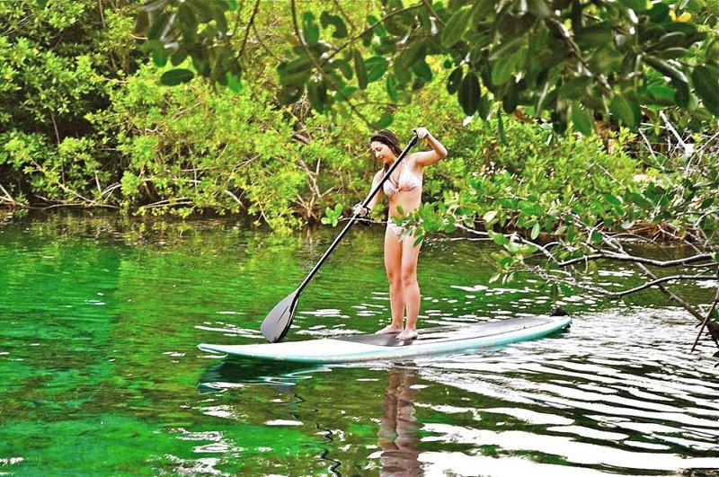 Best SUP and Snorkel Tour in Casa Cenote Tulum