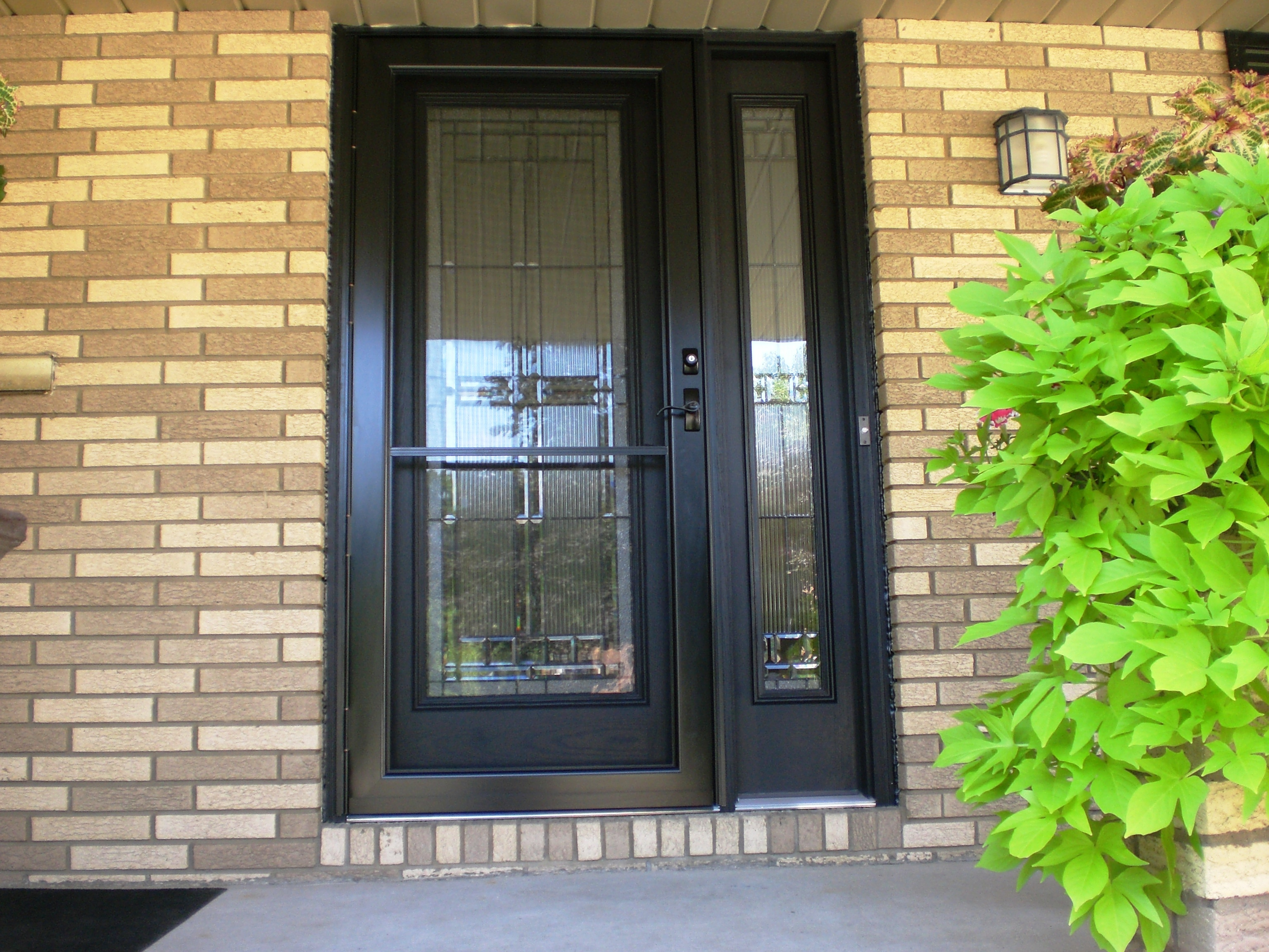 Paint Exterior Stain Interior w/ Storm Door