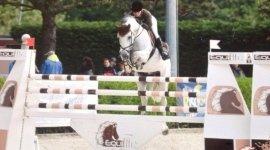 preparzione a concorsi di dressage, preparazione a competizioni equestri, istruttori di dressage