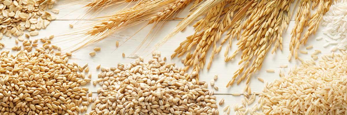 wa consolidated grain grains