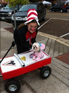 shih-tzu-mouse-in-trap-costume
