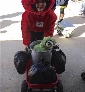 shih-tzu-ocscar-the-grouch-costume