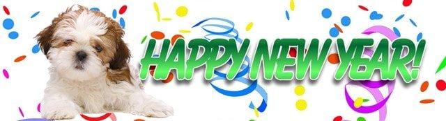 shih-tzu-new-year