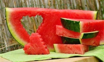 Can shih tzu puppies and dogs eat fruit for What parts of a watermelon can you eat