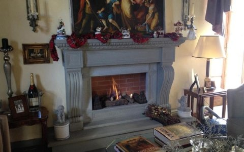 Fireplace for the home