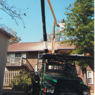 Trimming the trees above a house with help of a truck