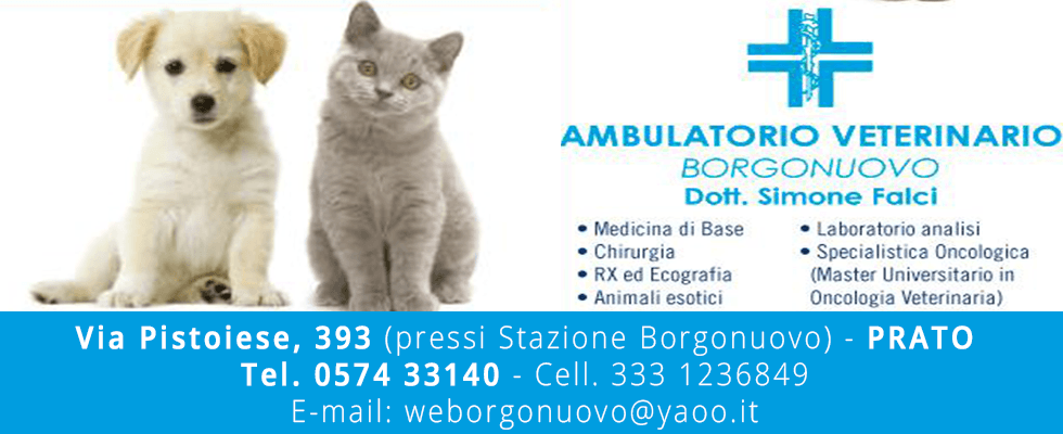 ambulatorio veterinario prato
