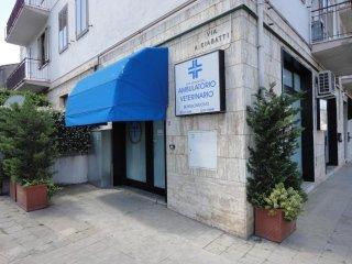 Clinica veterinaria Borgonuovo