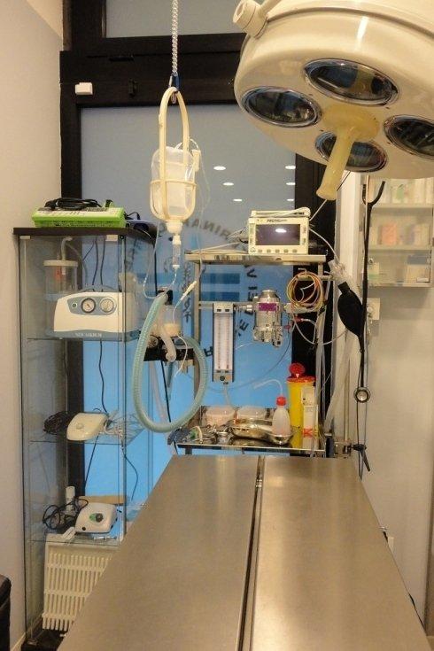 Chirurgia veterinaria