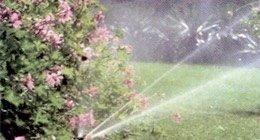 irrigazione ornamentale