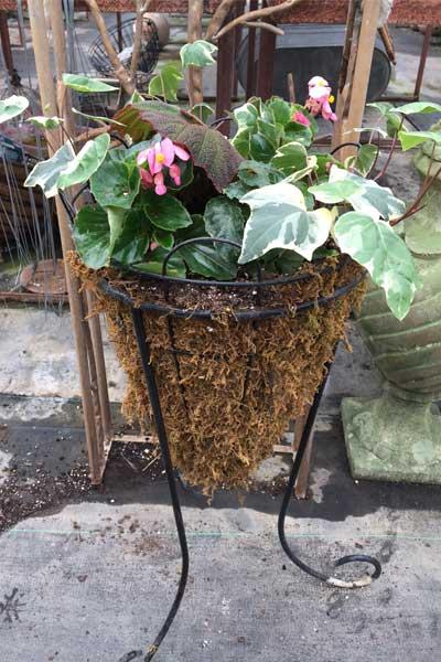 standing flower basket