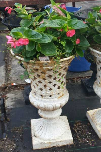 white floral container