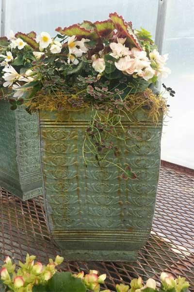 green ceramic planter