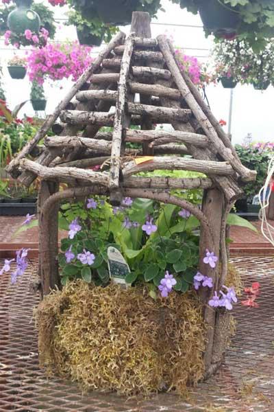 wood house planter