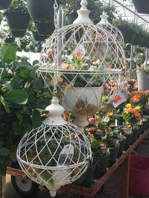 bird house container