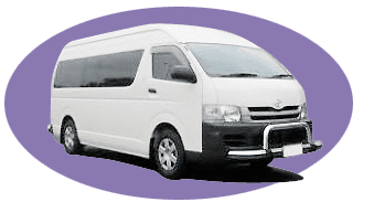 grace coaches mini bus hunter valley nsw