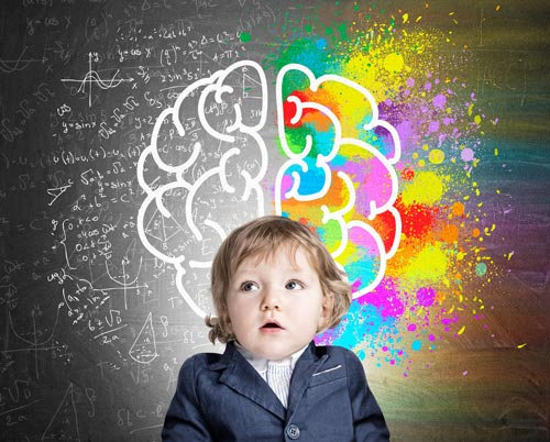 a child developing their brain