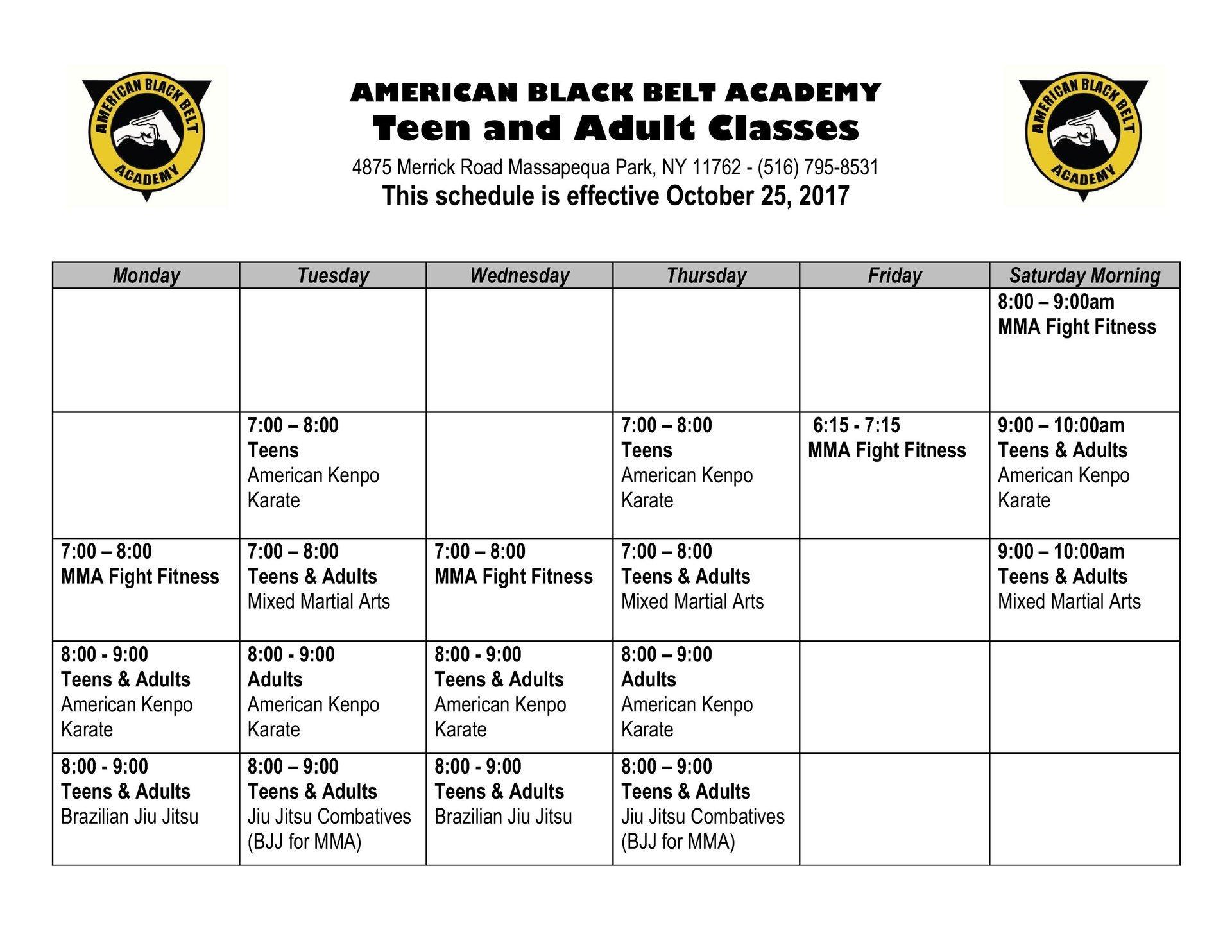 Adult Mixed Martial Arts Class Schedule in Massapequa Park, NY