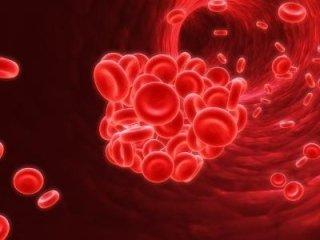 Controllo anemia