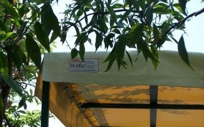 realizzazione coperture in pvc per esterni
