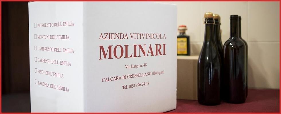 azienda vinicola bologna
