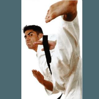 Arti marziali per amatori e agonisti