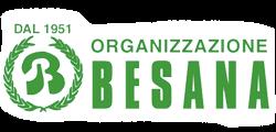 Organizzazione Besana