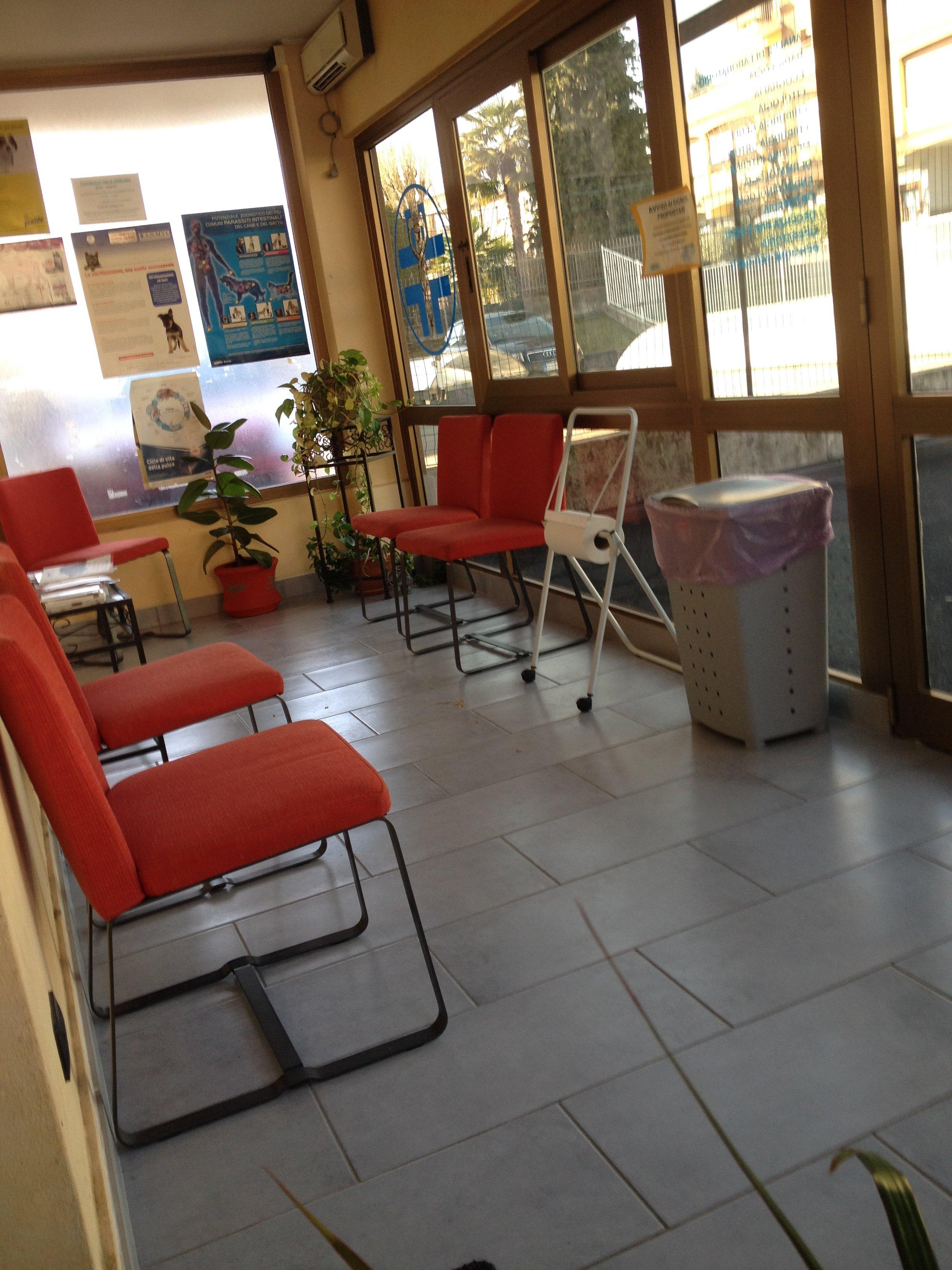 Sala d'attesa del centro veterinario