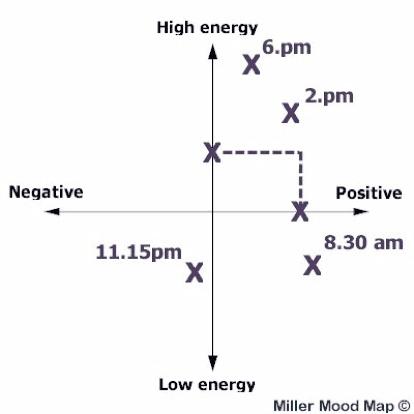 Doctors' Support Network 2016 Dr Liz Miller Figure 2 mood mapping mental health
