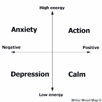 Doctors' Support Network 2016 Dr Liz Miller Figure 1 mood mapping mental health
