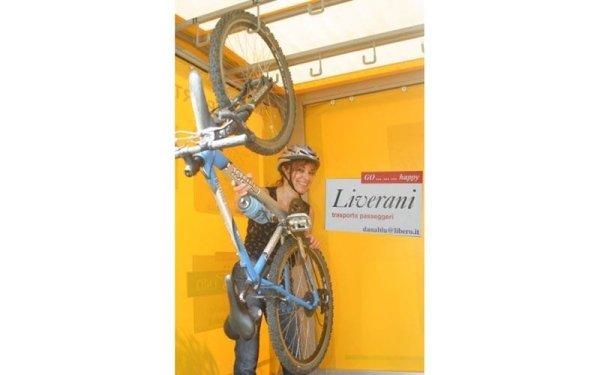 Carrello per trasporto bici