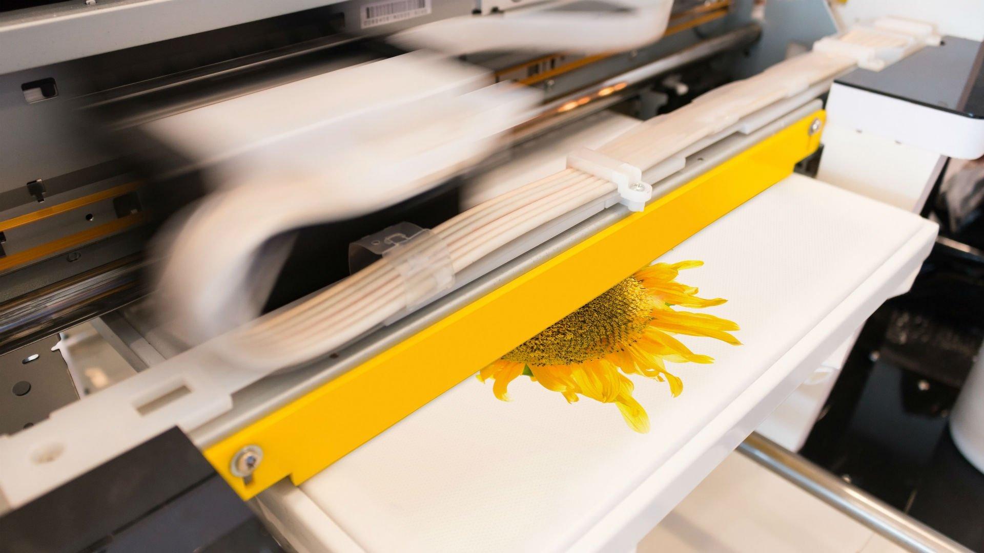 una stampante e un foglio stampato con un girasole