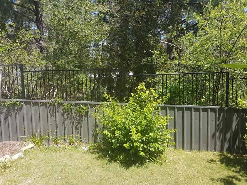 fence in backyard