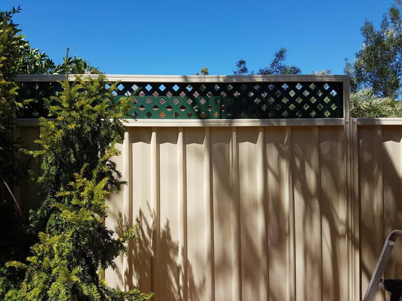 tan fence with green top