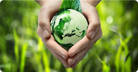 Hands holding a globe and a leaf