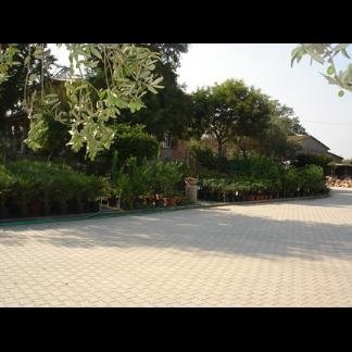 posa pavimenti giardini