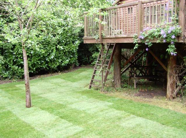 Landscape Garden Services Ltd U2013 Izvipi.com
