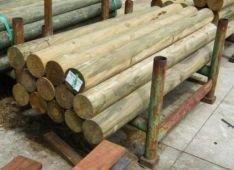 panther timber hardware timber pine logs