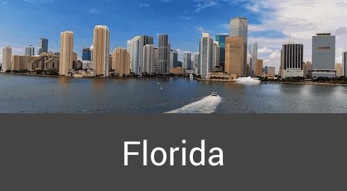 limo service Florida
