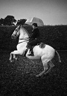 Horse rider with an umbrella