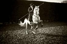vintage horse rider photo