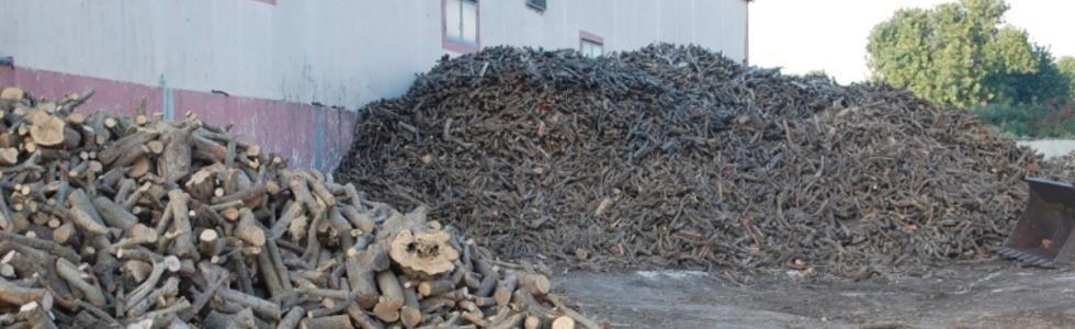vendita legna e biocombustibile